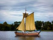 Phoenix Sail