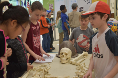Archaeology Camp Kids Examining Bones